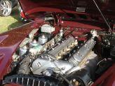 Motuer Jaguar