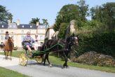 rencontre insolite au Château de la Bellière