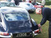 Jaguar (8).jpg